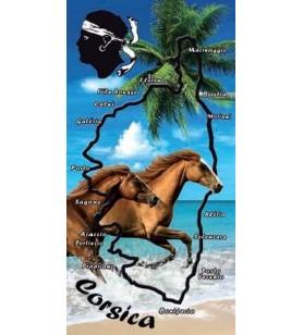 handtuch mit pferde, strand, korsika