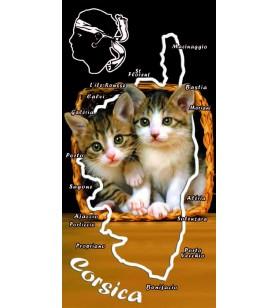 Serviette chatons corsica
