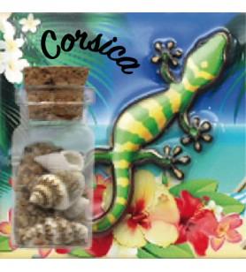 Magnete sabbia bottiglia salamandra