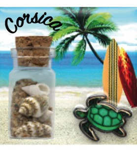 Magnet sable bouteille tortue