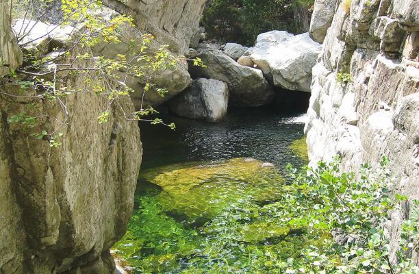 Gorges du Tavignano 2.jpg
