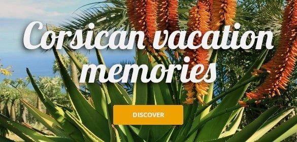 Corsican vacation memories